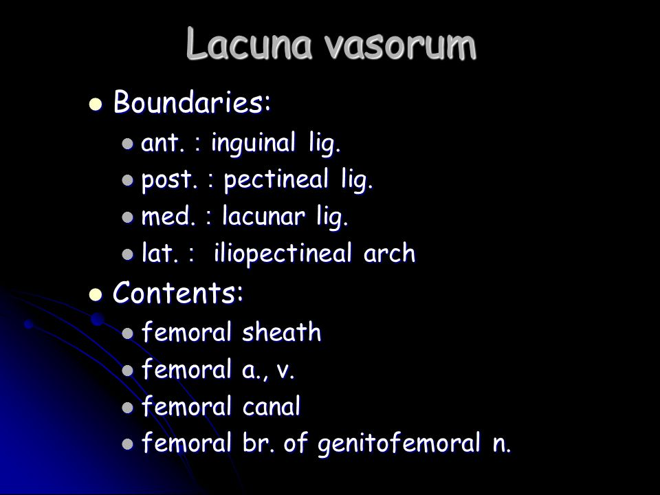 Lacuna vasorum Boundaries: Contents: ant.:inguinal lig.