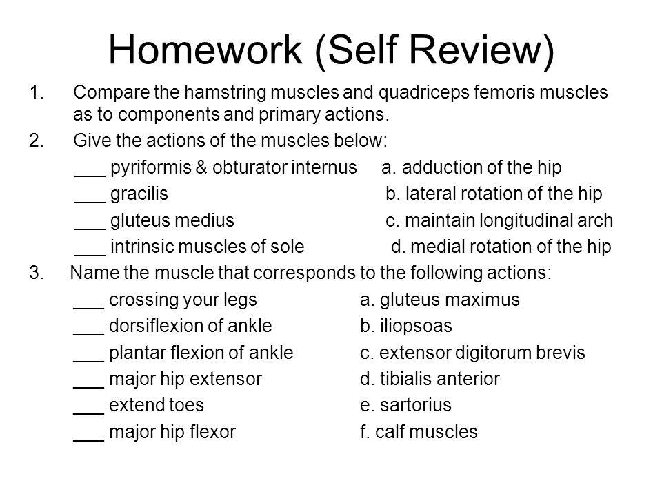 Homework (Self Review)