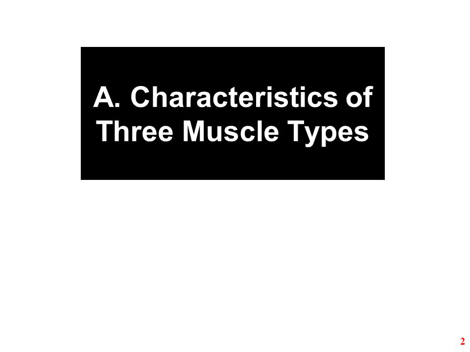 A. Characteristics of Three Muscle Types