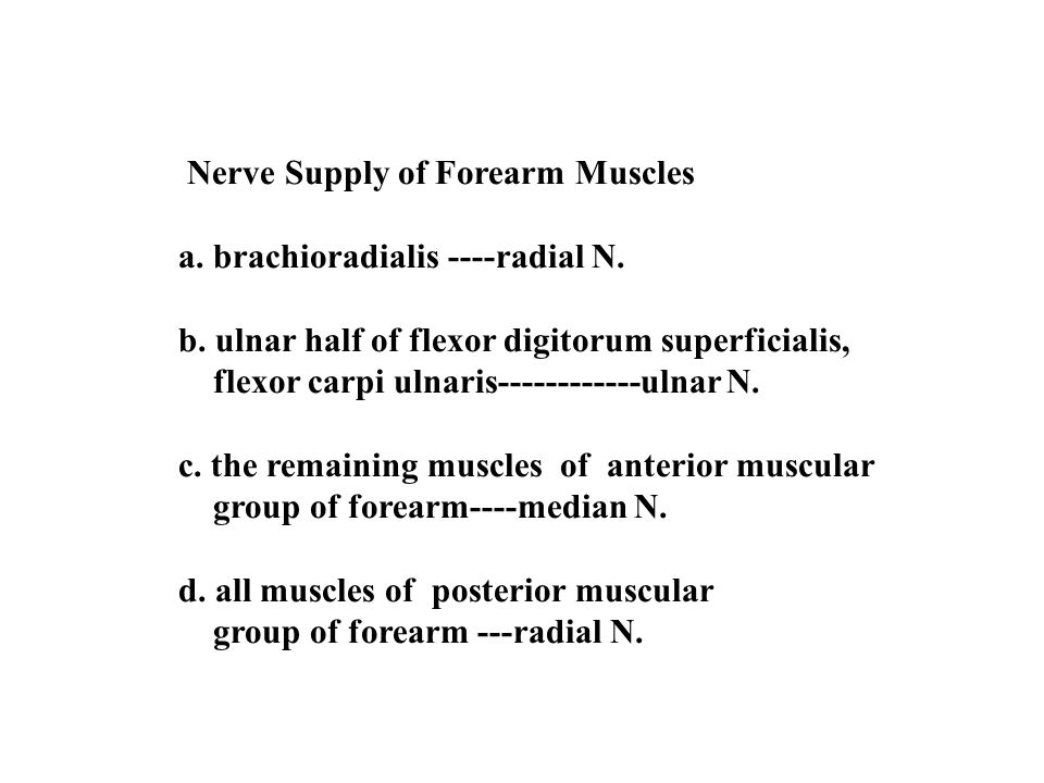 Nerve Supply of Forearm Muscles