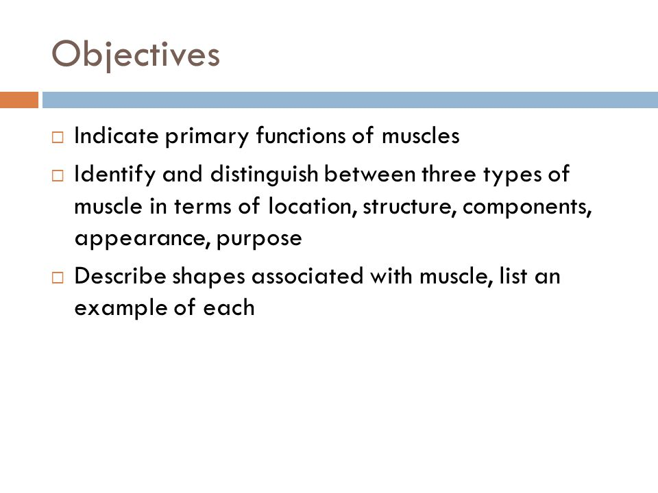 Objectives Indicate primary functions of muscles
