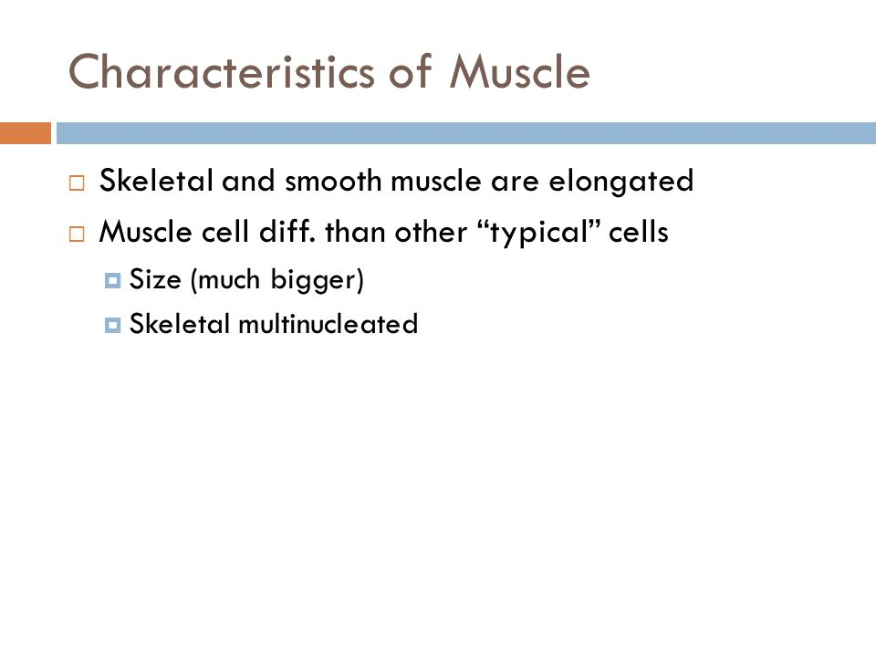 Characteristics of Muscle