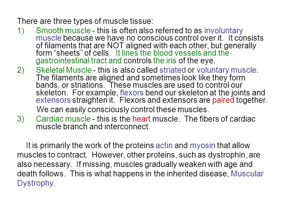 There are three types of muscle tissue: