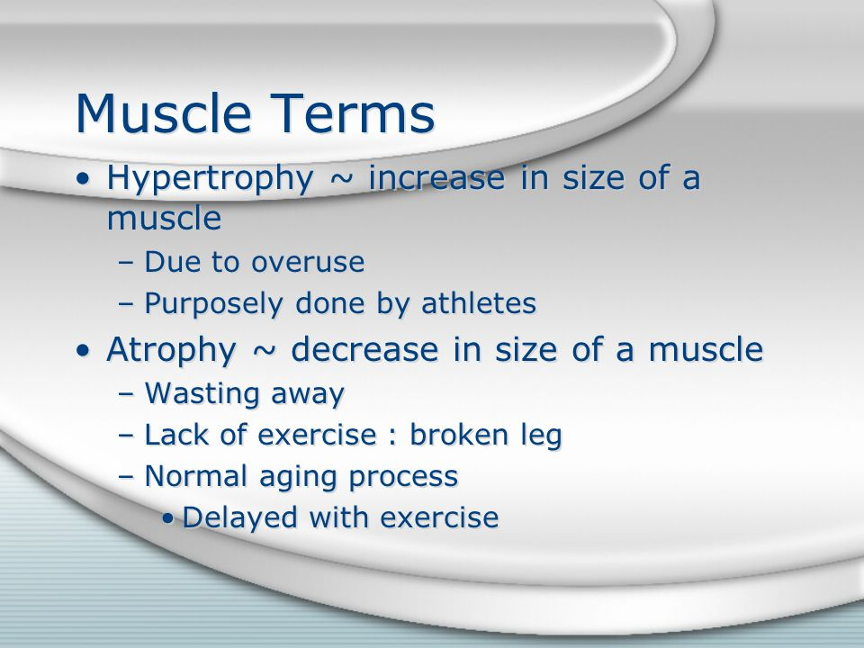 Muscle Terms Hypertrophy ~ increase in size of a muscle
