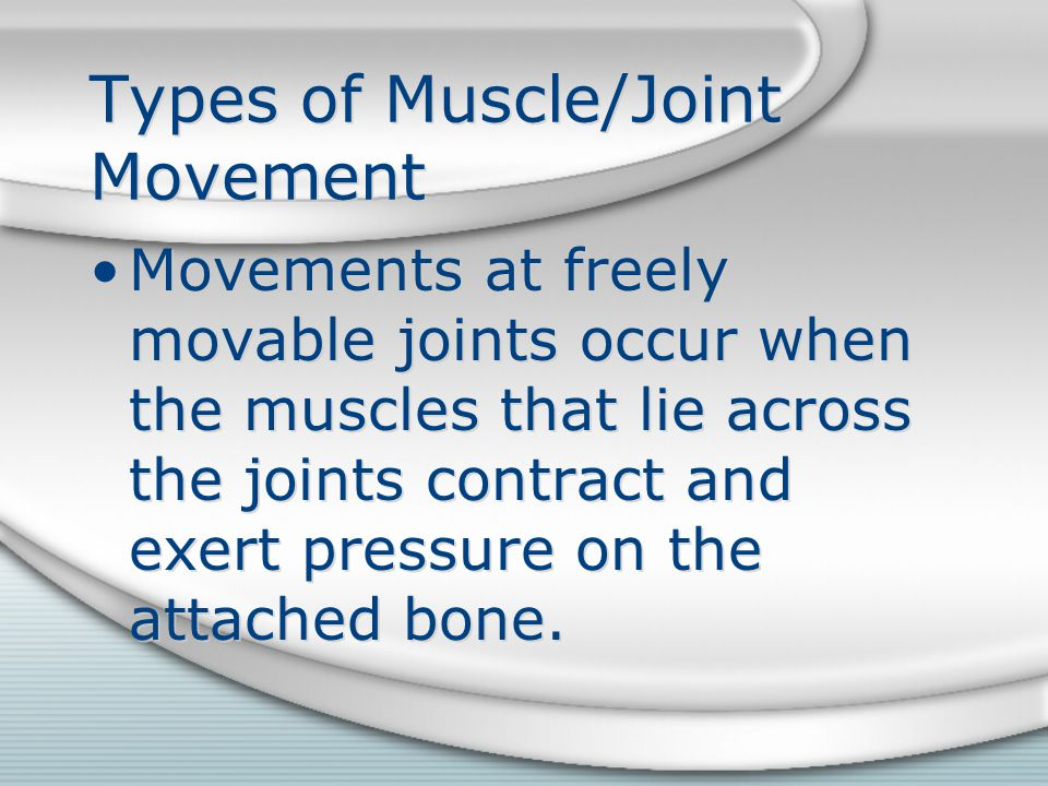 Types of Muscle/Joint Movement