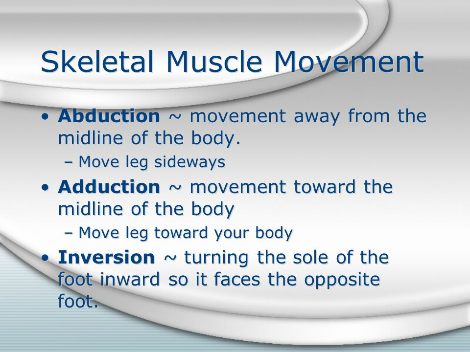 Skeletal Muscle Movement
