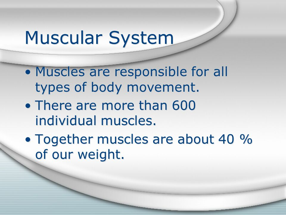 Muscular System Muscles are responsible for all types of body movement. There are more than 600 individual muscles.