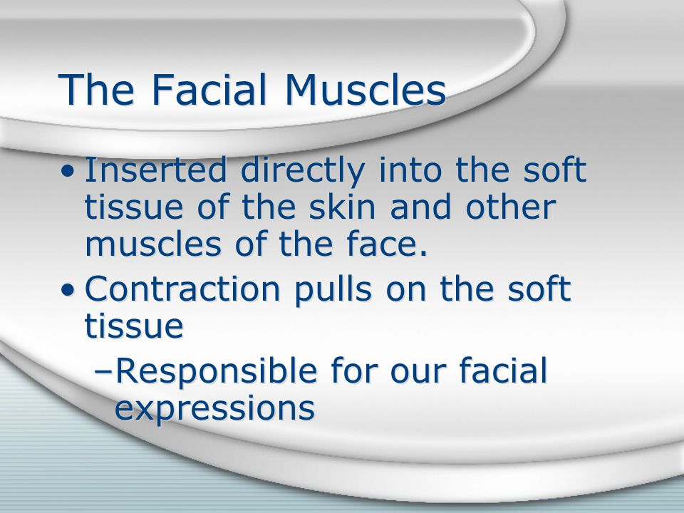 The Facial Muscles Inserted directly into the soft tissue of the skin and other muscles of the face.
