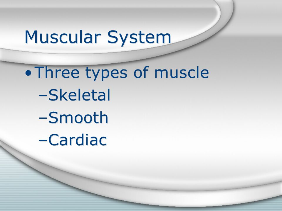 Muscular System Three types of muscle Skeletal Smooth Cardiac