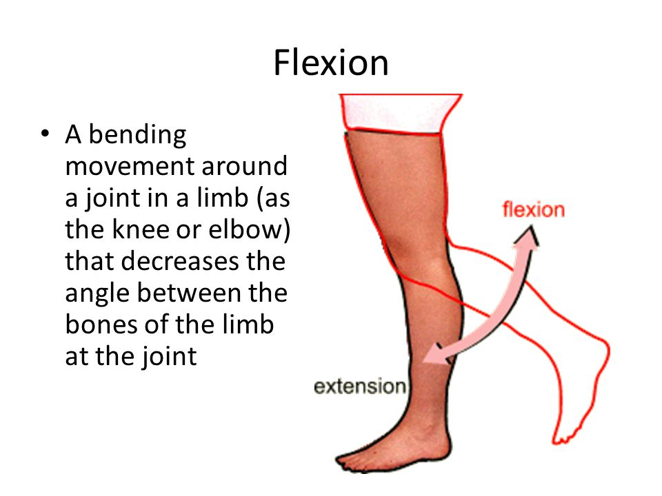 Flexion A bending movement around a joint in a limb (as the knee or elbow) that decreases the angle between the bones of the limb at the joint.