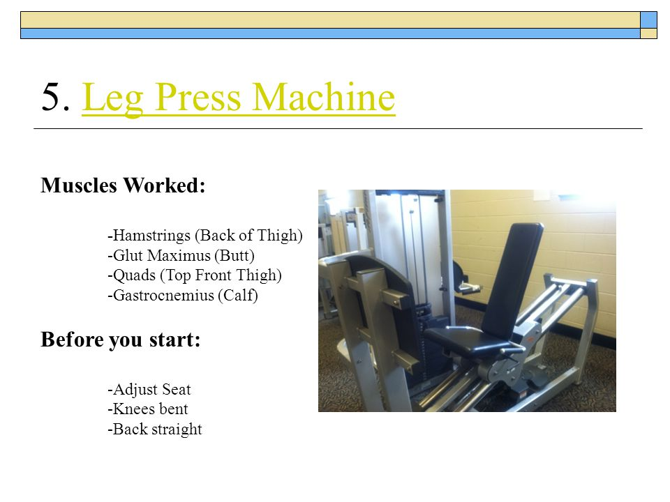 5. Leg Press Machine Muscles Worked: Before you start: