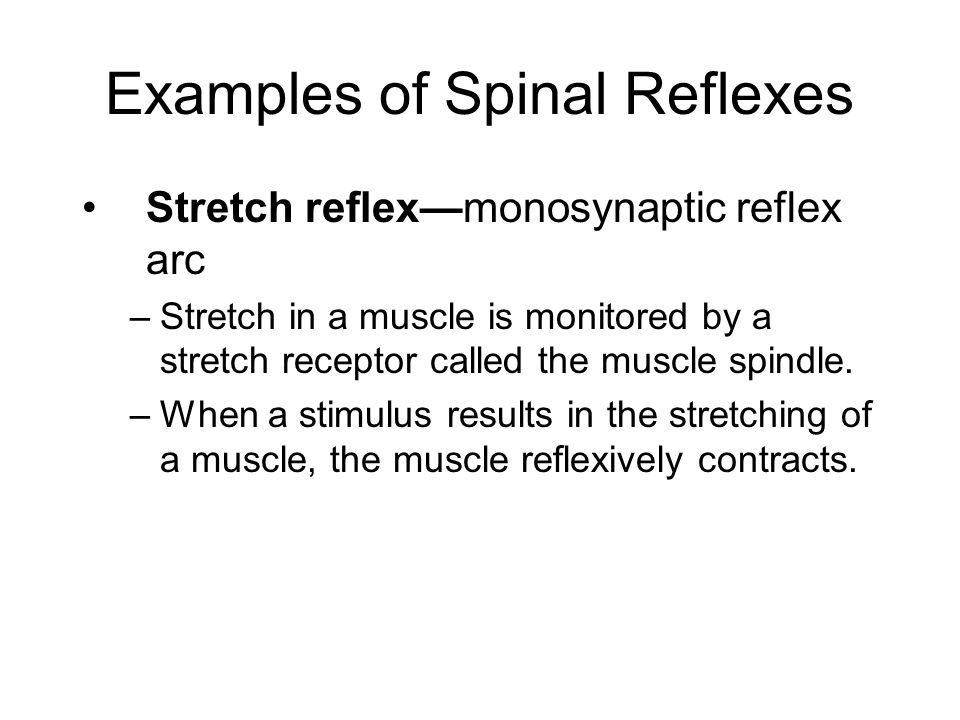 Examples of Spinal Reflexes