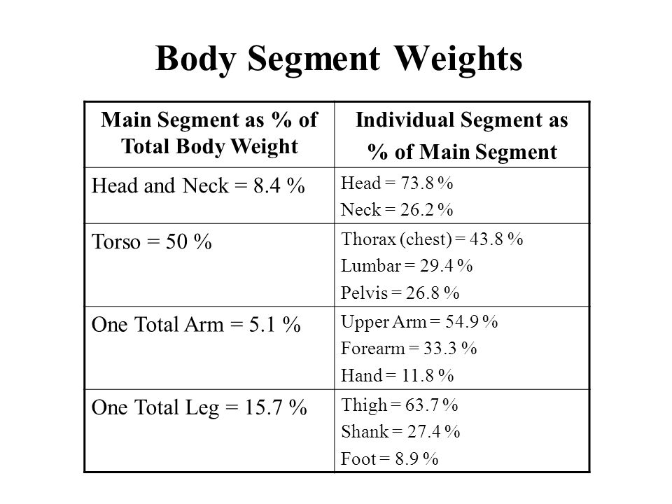 Main Segment as % of Total Body Weight