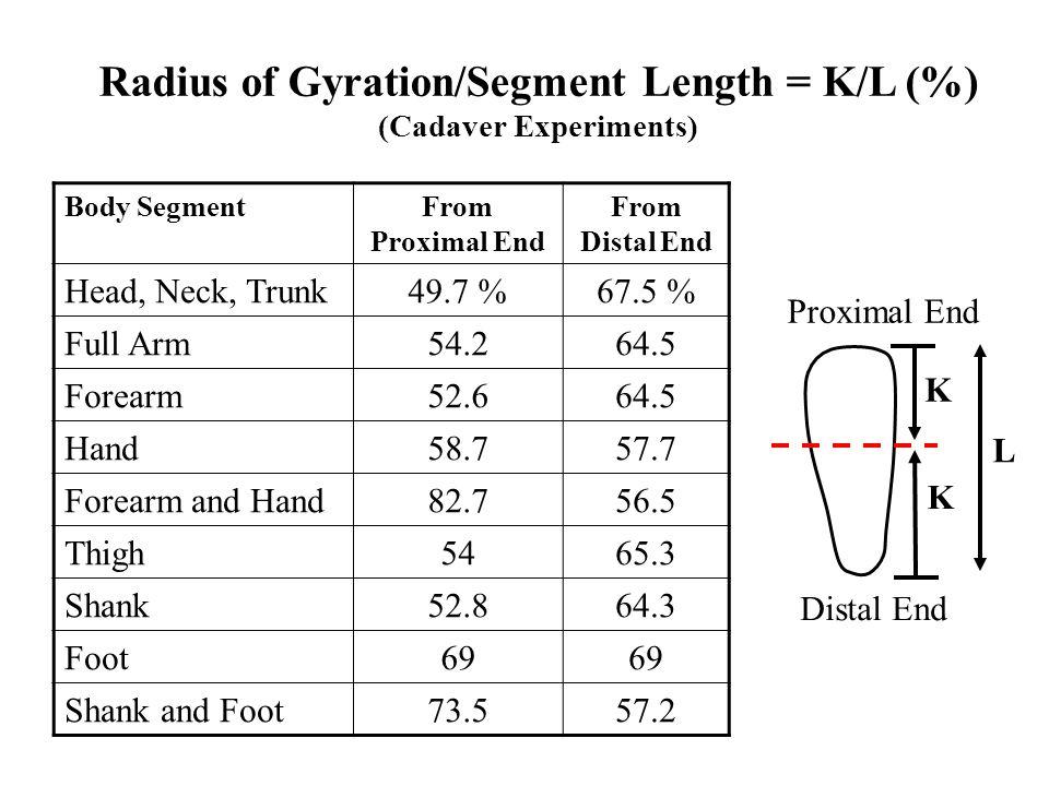 Radius of Gyration/Segment Length = K/L (%) (Cadaver Experiments)