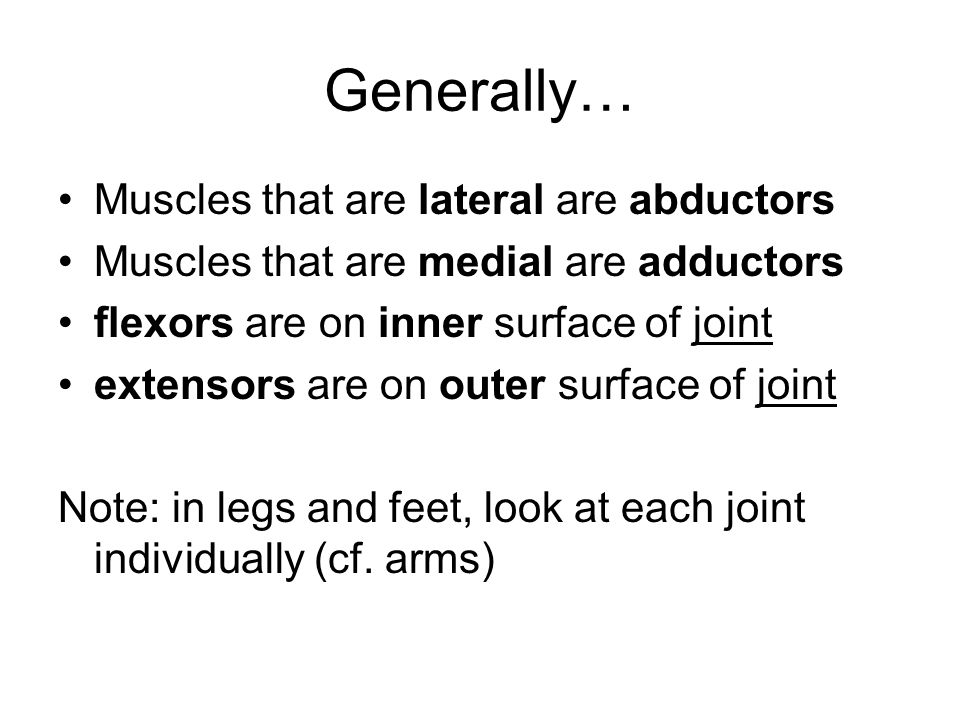 Generally… Muscles that are lateral are abductors