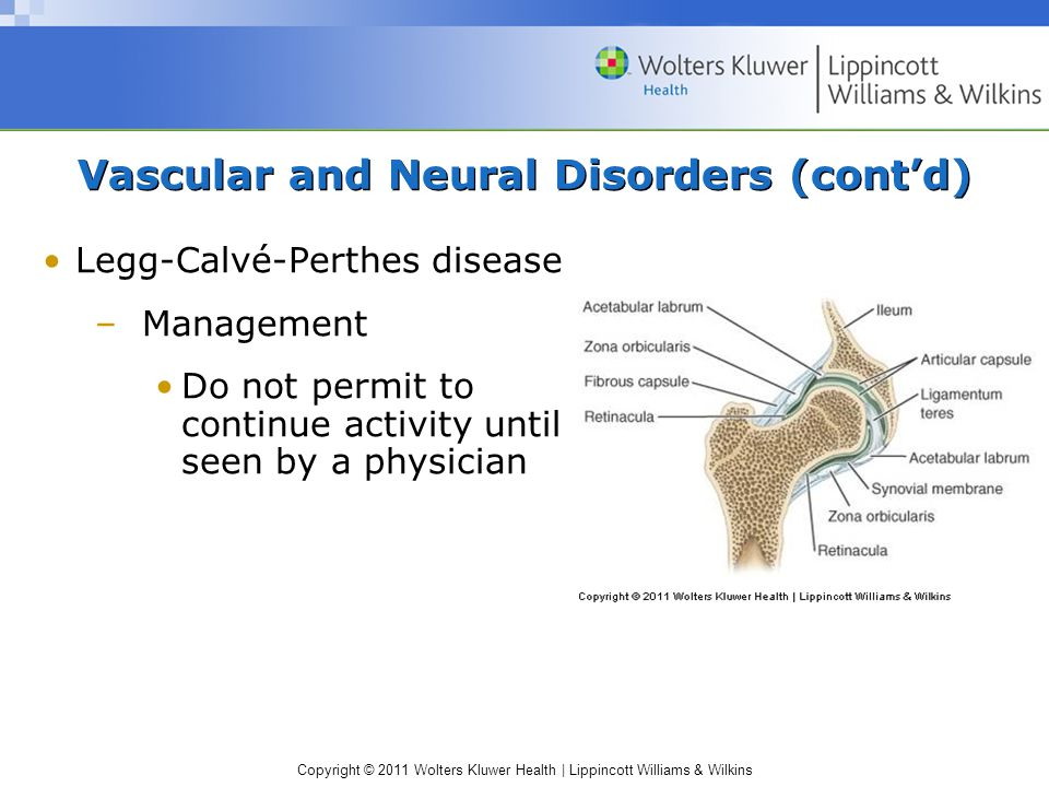 Vascular and Neural Disorders (cont'd)