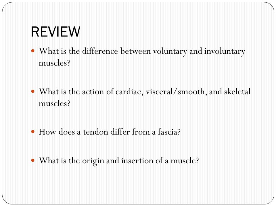 REVIEW What is the difference between voluntary and involuntary muscles What is the action of cardiac, visceral/smooth, and skeletal muscles