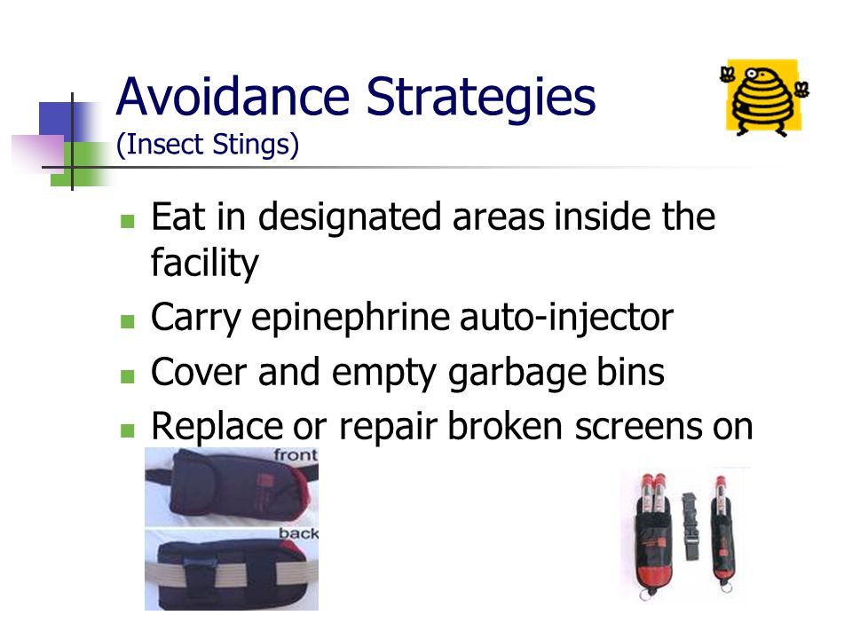 Avoidance Strategies (Insect Stings)