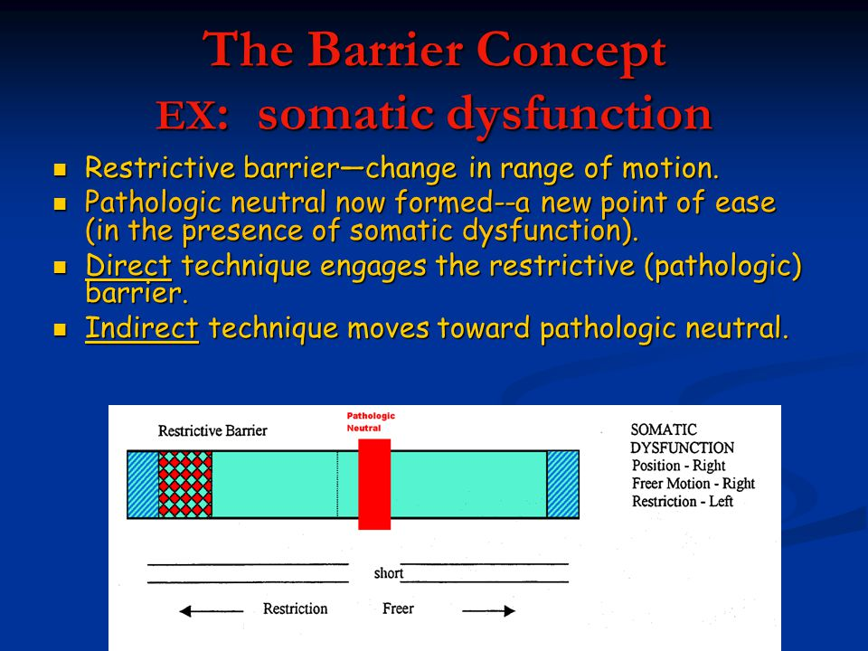 The Barrier Concept EX: somatic dysfunction