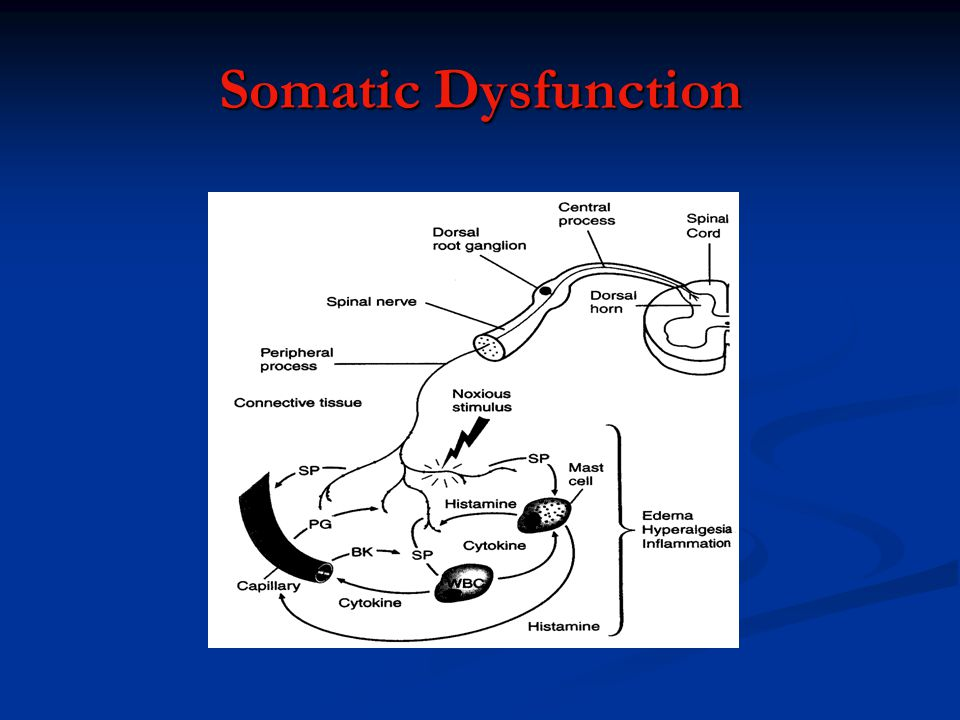 Somatic Dysfunction