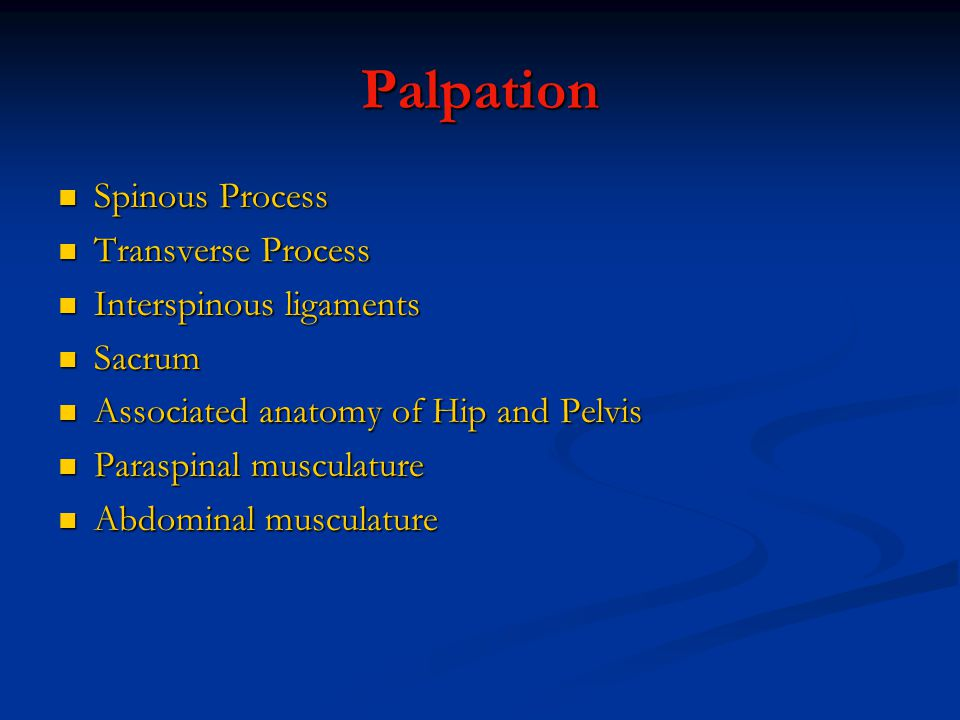Palpation Spinous Process Transverse Process Interspinous ligaments