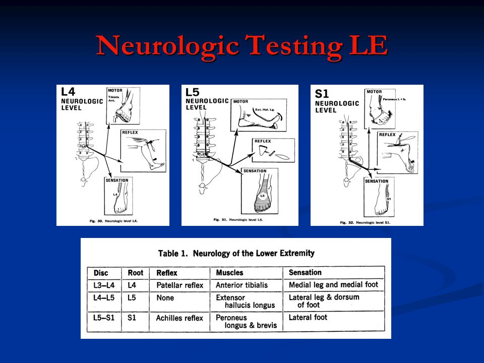Neurologic Testing LE
