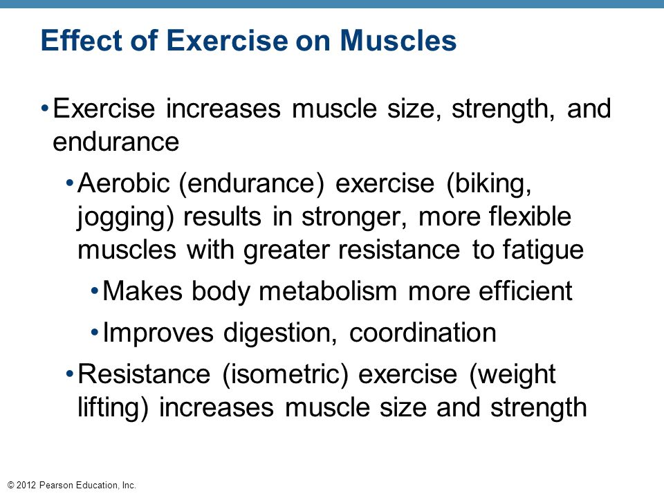 Effect of Exercise on Muscles
