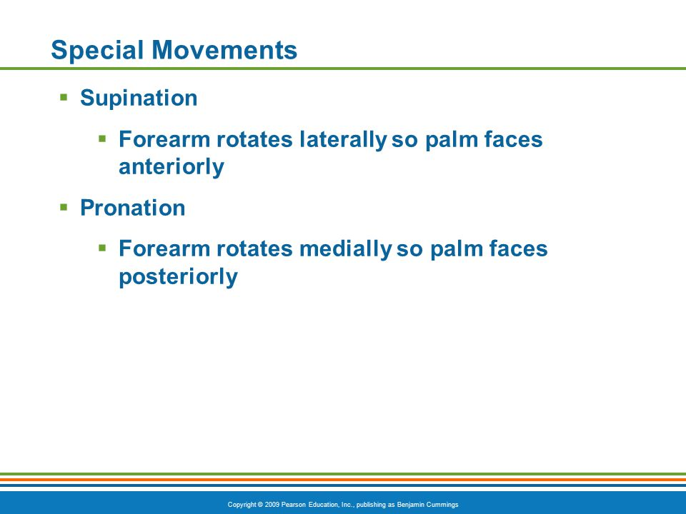 Special Movements Supination