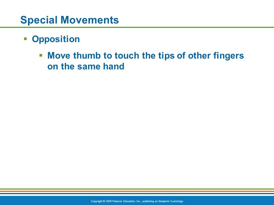 Special Movements Opposition