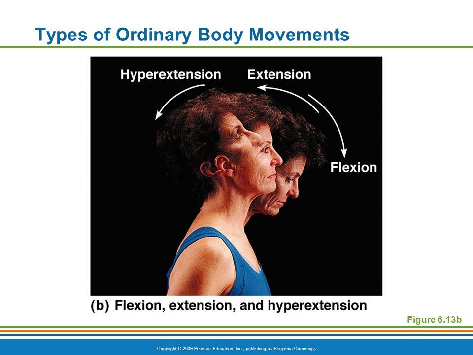 Types of Ordinary Body Movements