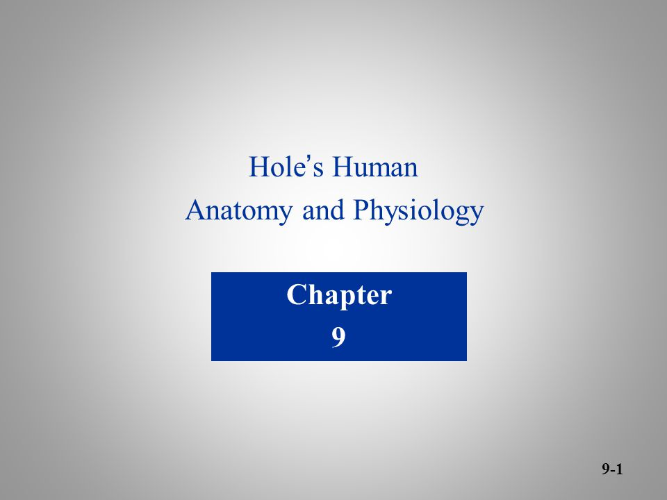Increíble Holes Anatomy And Physiology 11th Edition Online Foto ...