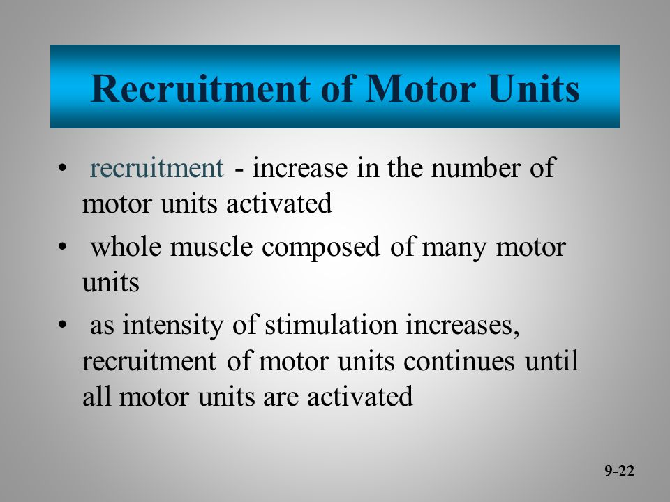 Recruitment of Motor Units