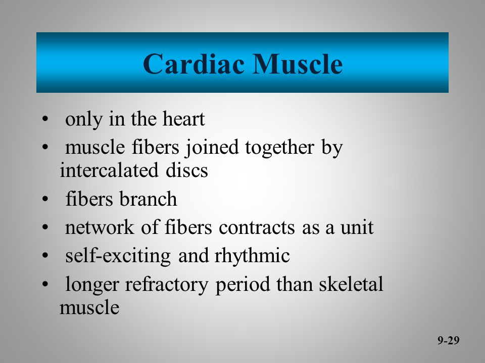 Cardiac Muscle only in the heart