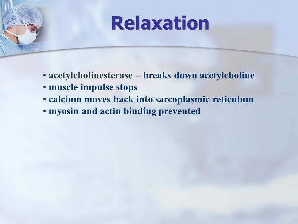 Relaxation acetylcholinesterase – breaks down acetylcholine