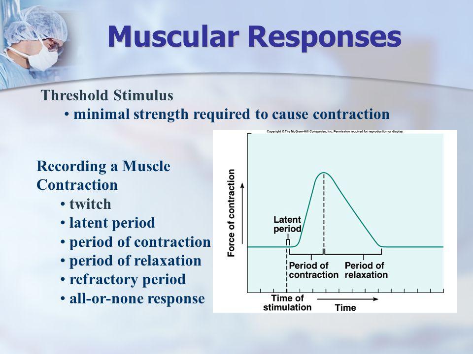 Muscular Responses Threshold Stimulus