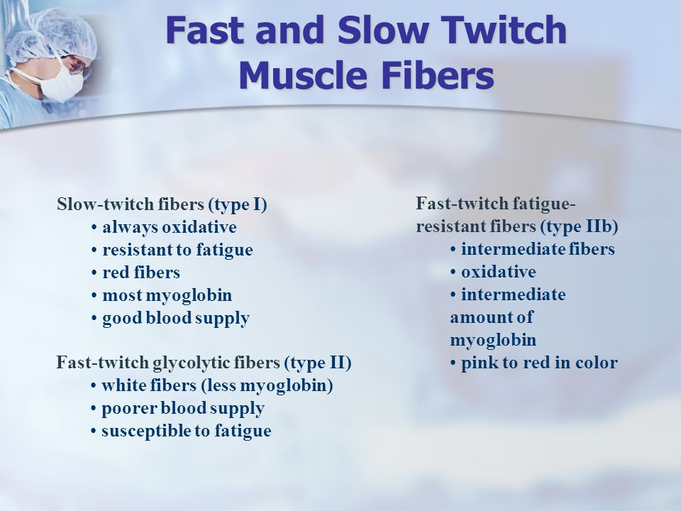 Fast and Slow Twitch Muscle Fibers
