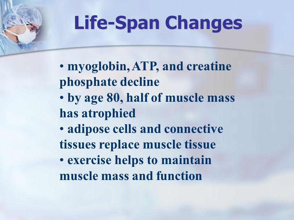 Life-Span Changes myoglobin, ATP, and creatine phosphate decline