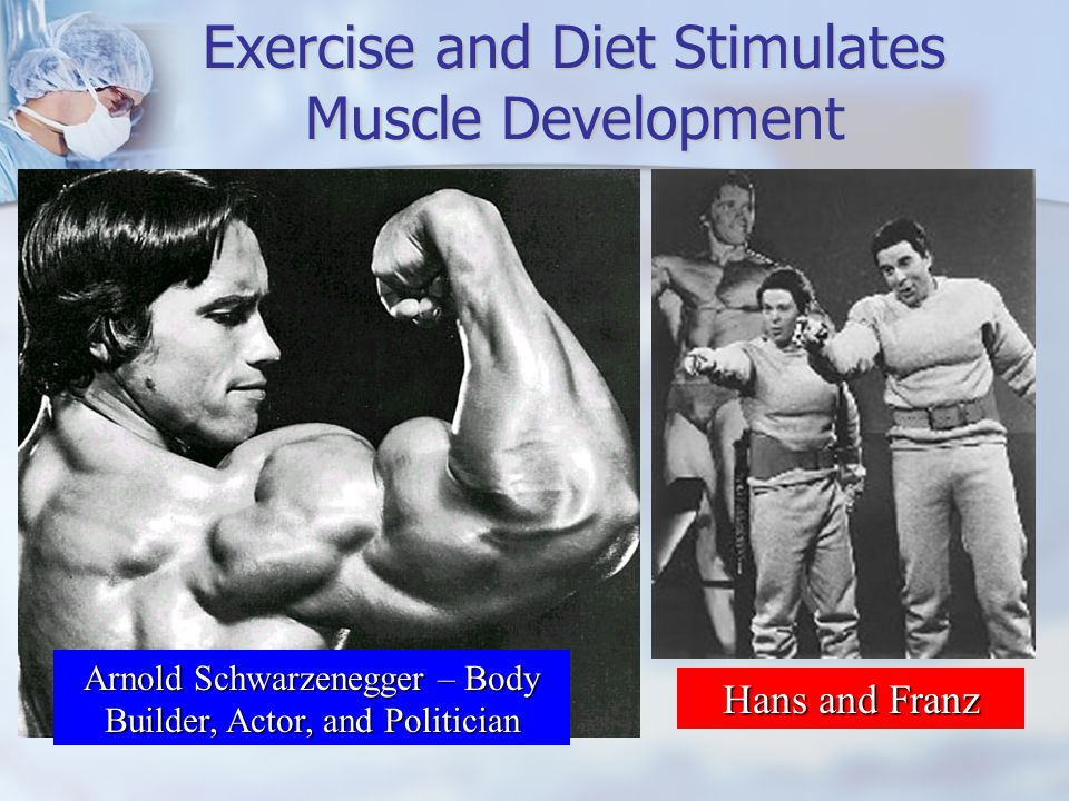 Exercise and Diet Stimulates Muscle Development