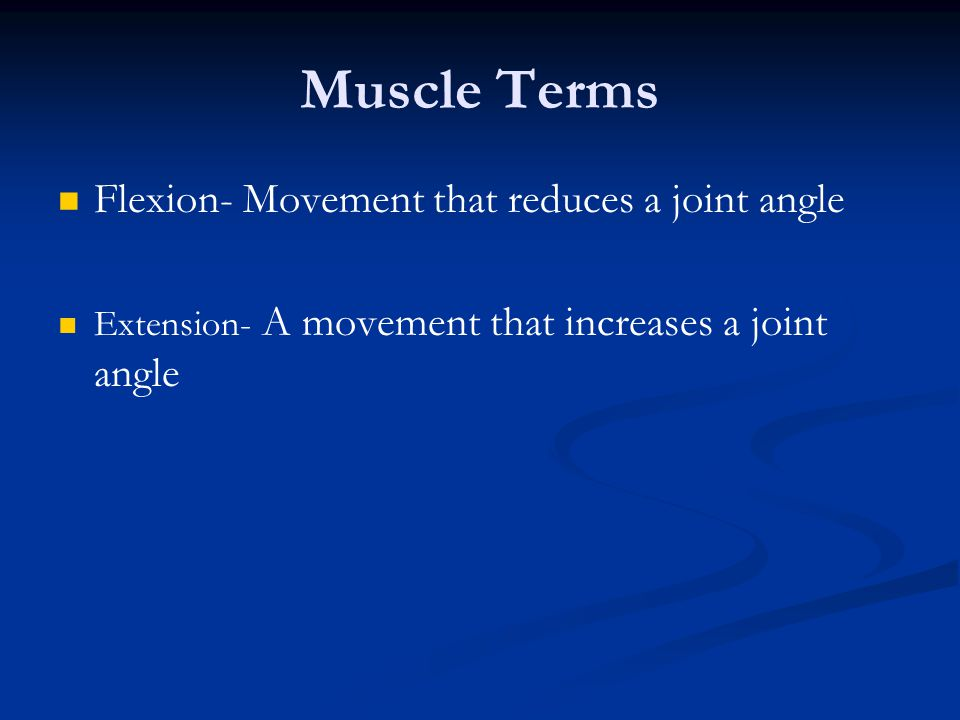 Muscle Terms Flexion- Movement that reduces a joint angle