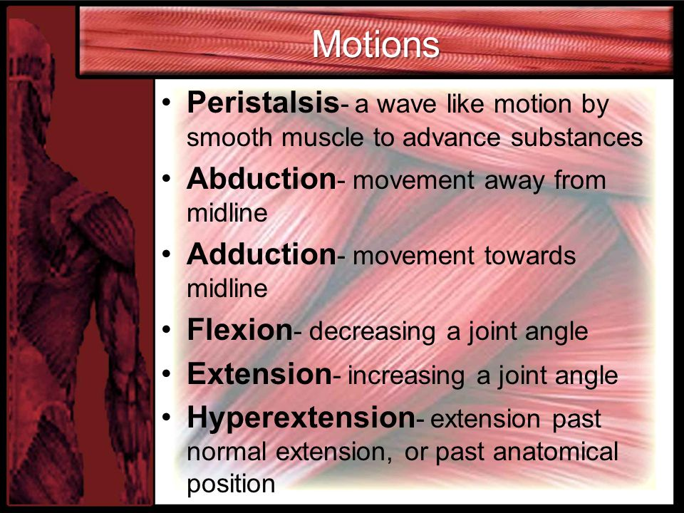 Motions Peristalsis- a wave like motion by smooth muscle to advance substances. Abduction- movement away from midline.