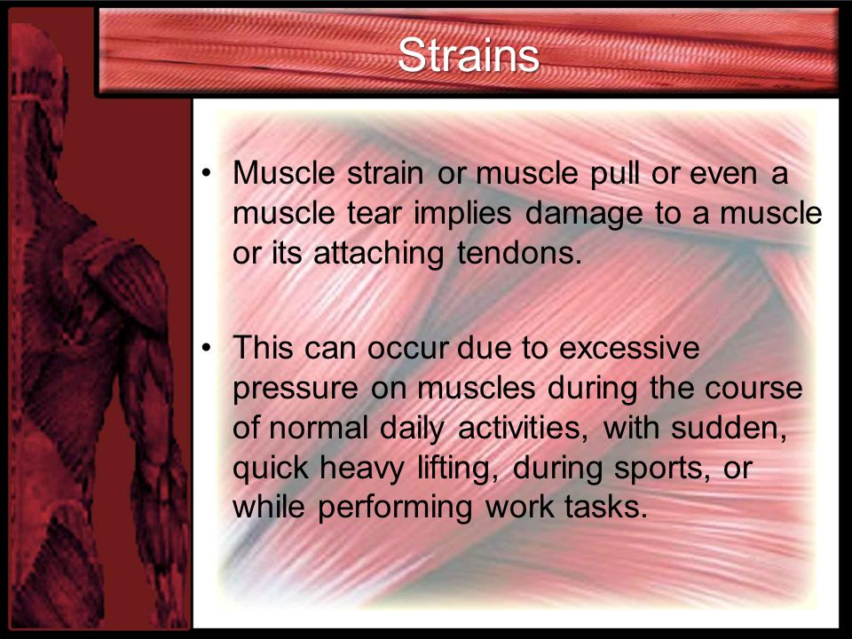 Strains Muscle strain or muscle pull or even a muscle tear implies damage to a muscle or its attaching tendons.