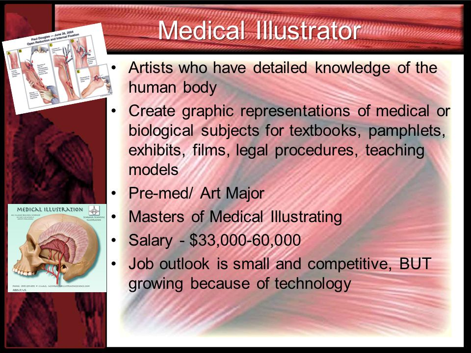 Medical Illustrator Artists who have detailed knowledge of the human body.