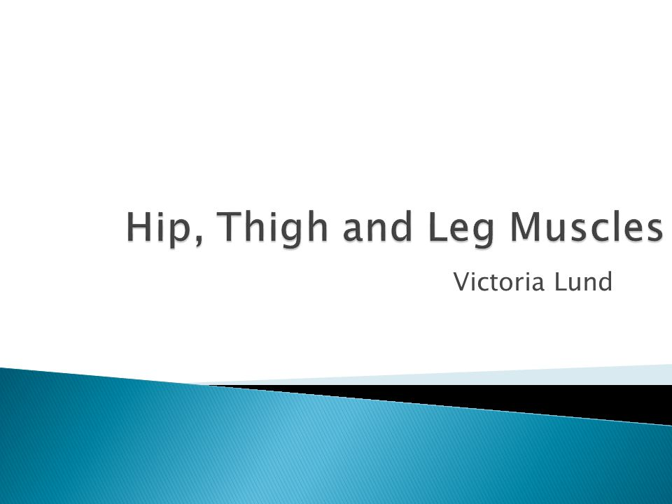 Hip, Thigh and Leg Muscles