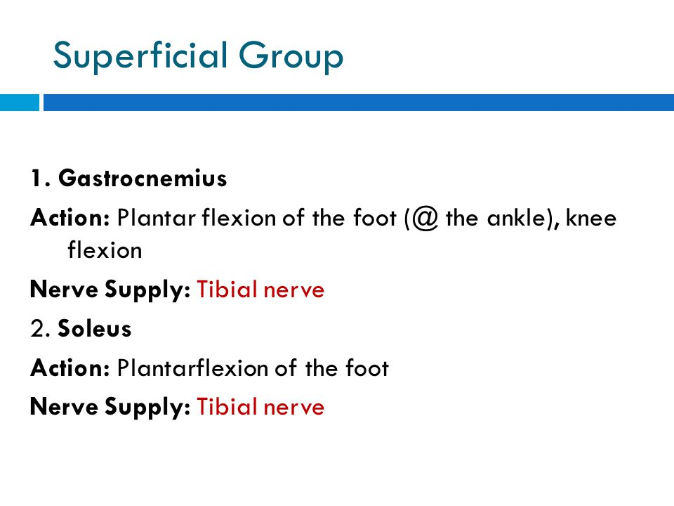 Superficial Group