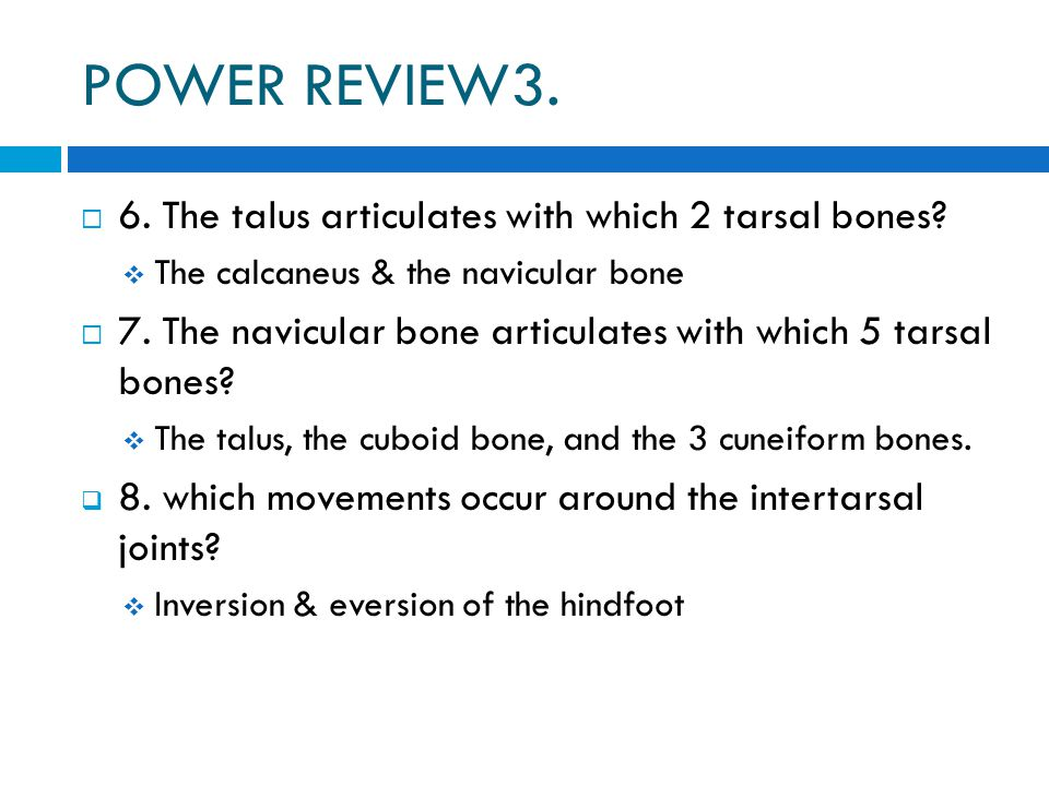 POWER REVIEW3. 6. The talus articulates with which 2 tarsal bones