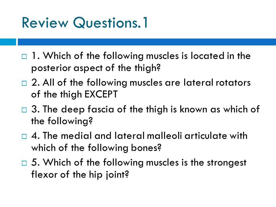 Review Questions.1 1. Which of the following muscles is located in the posterior aspect of the thigh