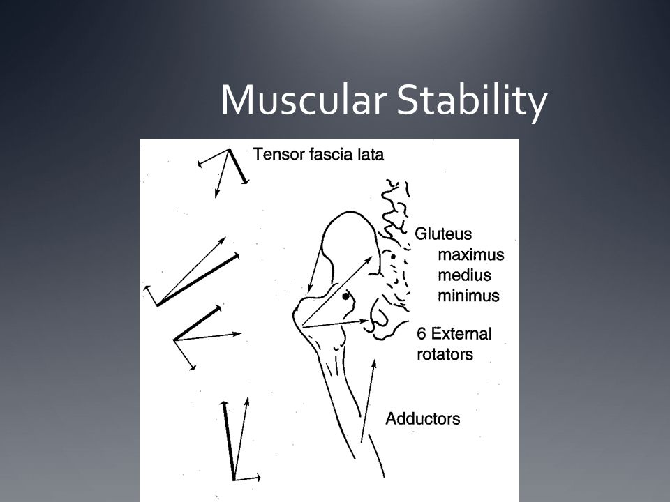 Muscular Stability
