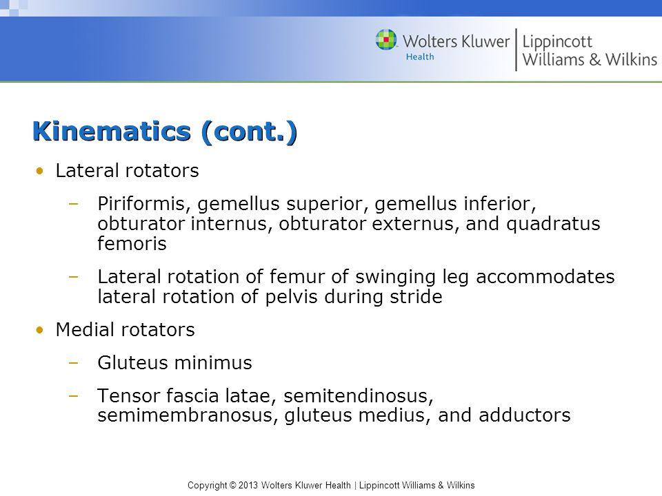 Kinematics (cont.) Lateral rotators