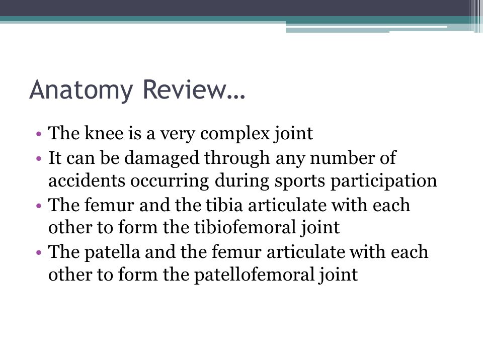 Anatomy Review… The knee is a very complex joint