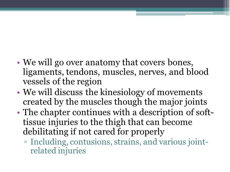 We will go over anatomy that covers bones, ligaments, tendons, muscles, nerves, and blood vessels of the region